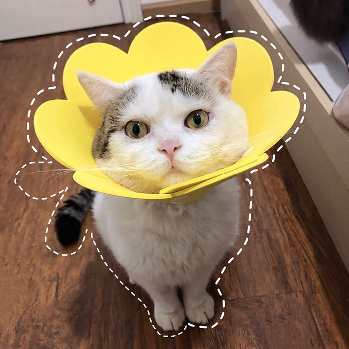 Cat Protective Collar Flower Shape Neck Cone-HappyFriendy