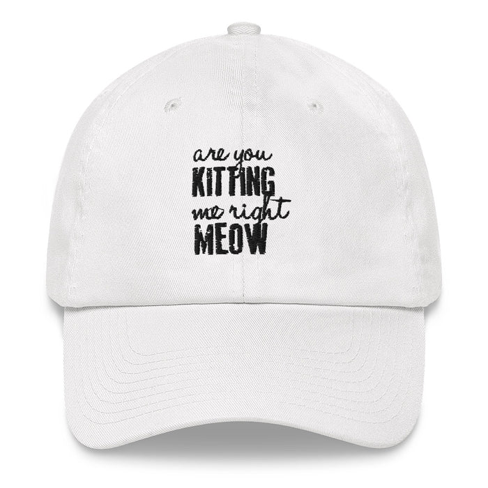 Are You Kitting Me Right Meow Hat-HappyFriendy