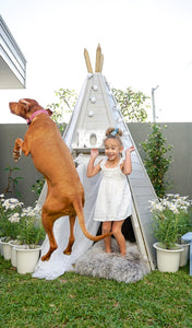 Small Backyard not a problem for a Teepee Cubby