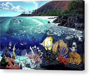 Aquarium At Makena - Acrylic Print - visitors