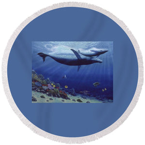 Baby Humpback - Round Beach Towel - visitors