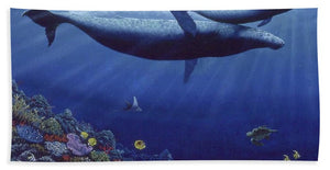 Baby Humpback - Beach Towel - visitors