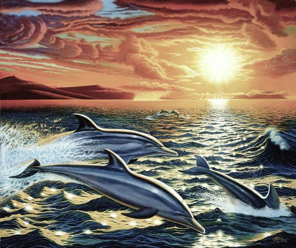Dolphin Dream - Art Print - visitors