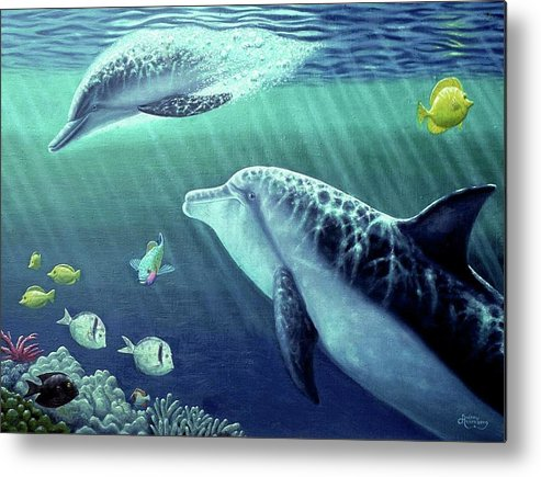 Sea Wise - Metal Print - visitors