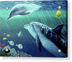 Sea Wise - Acrylic Print - visitors