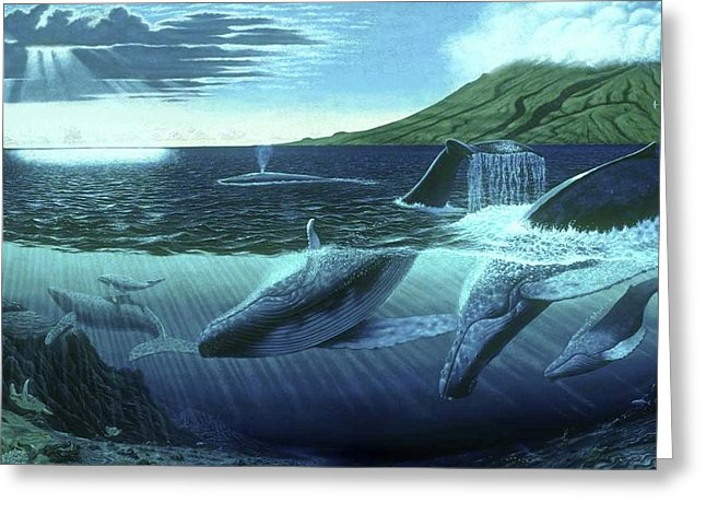 The Great Whales - Greeting Card - visitors