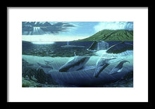 The Great Whales - Framed Print - visitors