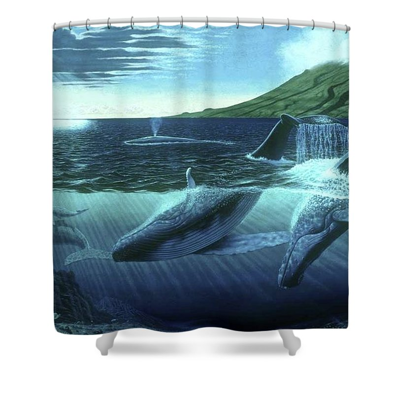 The Great Whales - Shower Curtain - visitors