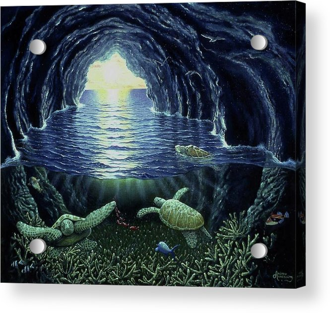 Turtle Cave - Acrylic Print - visitors