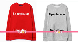 Jin's Style Spectacular Sensation Sweater