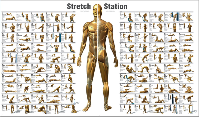 Stretch Station