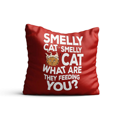 Friends TV Series Smelly Cat Satin Cushion Cover