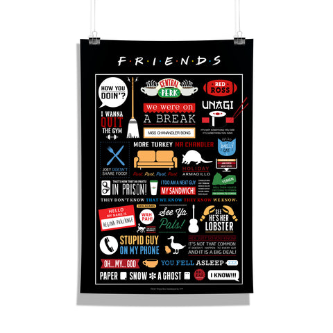 Friends TV Series Infographic Poster