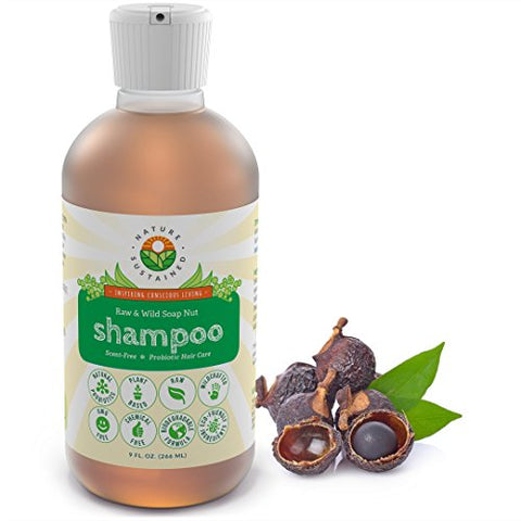 Soapberry Organic Shampoo for Sensitive Itchy Dry Scalp - Probiotic + Raw & Wild Plants for Eczema, Psoriasis & Dandruff