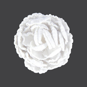 Flowers - English Roses (3.5cm) - 50 pieces