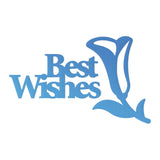 Die - Mini - Rel 1 - Best Wishes Sentiment (2pc)