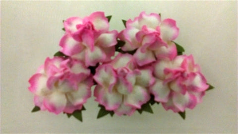 Handmade Mulberry Paper Flowers - 5 Stems (3 cm) - White with Hot Pink Edge