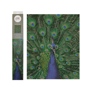 Kaiser Sparkle Kits - Peacock