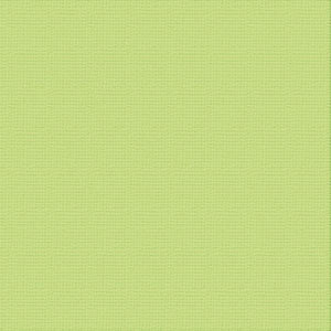 Ultimate Crafts 12x12 CARDSTOCK - MANTIS (10 Sheets)