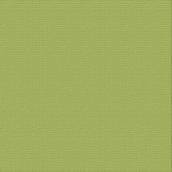 Cardstock - 12x12 - Olive Grove (216gsm)