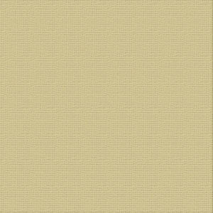 Ultimate Crafts 12x12 CARDSTOCK - DRIFTWOOD (10 Sheets)