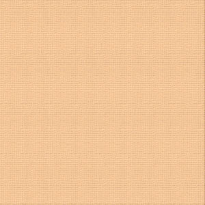 Ultimate Crafts 12x12 CARDSTOCK - CANTELAUPE (10 Sheets)