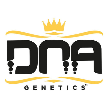 DNA Genetics Feminised Cannabis Seeds