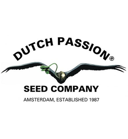 Dutch Passion Feminised Cannabis Seeds