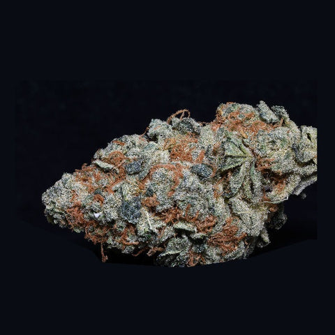 Big Head Seeds - Cookie Dawg