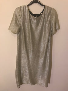 Sass silver shimmer dress Size 12