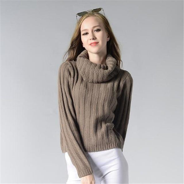 Brown Fashion Knitted Pullovers Trendy Casual Sweater | TeresaClare