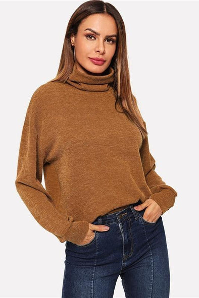 Brown High Neck Solid Pullover Casual Long Sleeve Sweater | TeresaClare