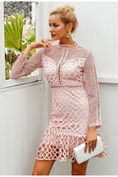 Pink Elegant Hollow Out Mesh Lace Women Dress | TeresaClare