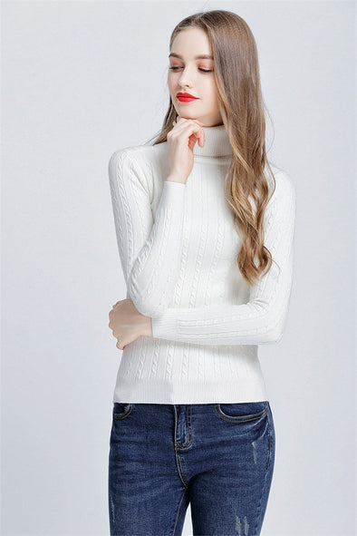 Pullovers Slim Elastic Turtleneck Knitted Sweater | TeresaClare