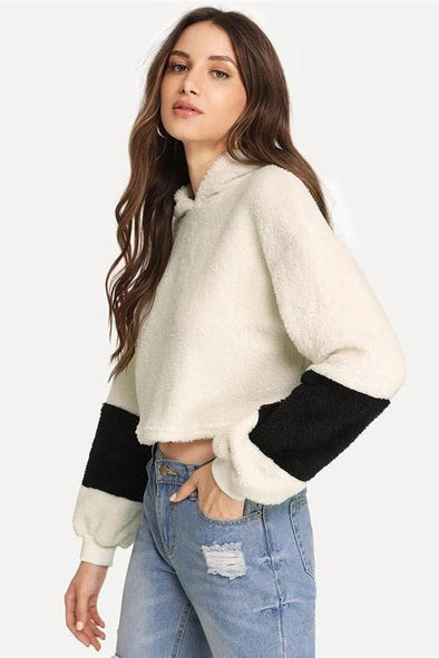 White Elegant Preppy Crop Teddy Colorblock Hoodie Sweatshirt | TeresaClare