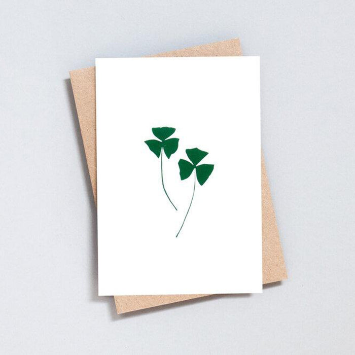 Foil Backed Oxalis Greeting Card