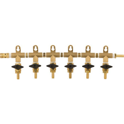 CO2 Manifold - 6-Way With Barb Shutoffs & Check Valves - Brass