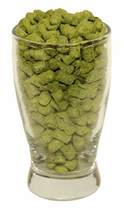 Northern Brewer Hop Pellets