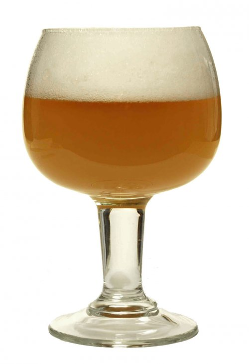 Misty Mountain Belgian White
