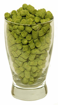Challenger Hop Pellets (UK)