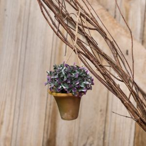 "4"" Miniature Hanging Potted Plant in Rustic Terra Cotta Pot"