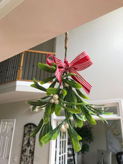 Large Mistletoe-Hanging Mistletoe-Artificial Mistletoe-Christmas Mistletoe-Mistletoe Ornament-Christmas Holiday Home and Office Party Decor
