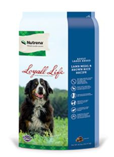 Loyall Life Adult Large Breed Lamb Meal & Rice