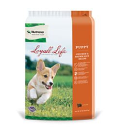 Loyall Life Puppy Chicken & Brown Rice Recipe