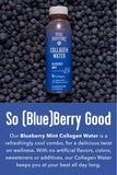 Collagen Water - Blueberry Mint