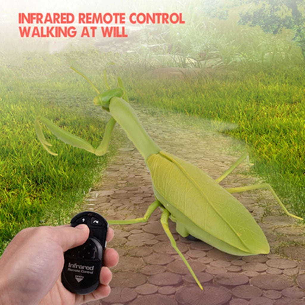 RC Praying Mantis Insect Toy