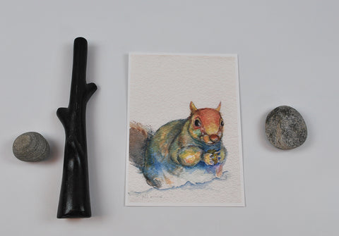 """All Mine"" Squirrel  Archival Print 5x7"