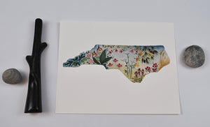 Native Plants of NC Archival Print 8x10