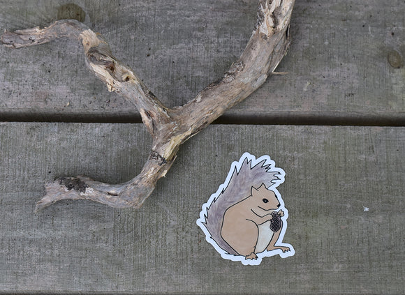 Squirrel Sticker 3x4