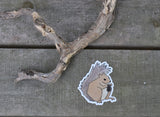 "Squirrel Sticker 3x4"" Cute Squirrel Drawing Indoor Outdoor Vinyl Sticker"